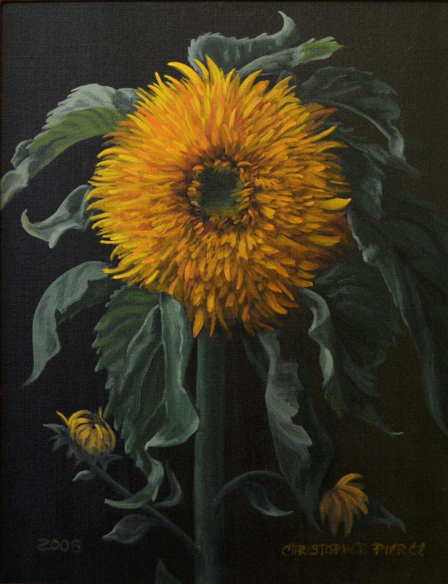 Christopher Pierce - Double Sunflower