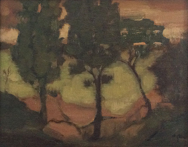 Paula Rubino - Cypresses
