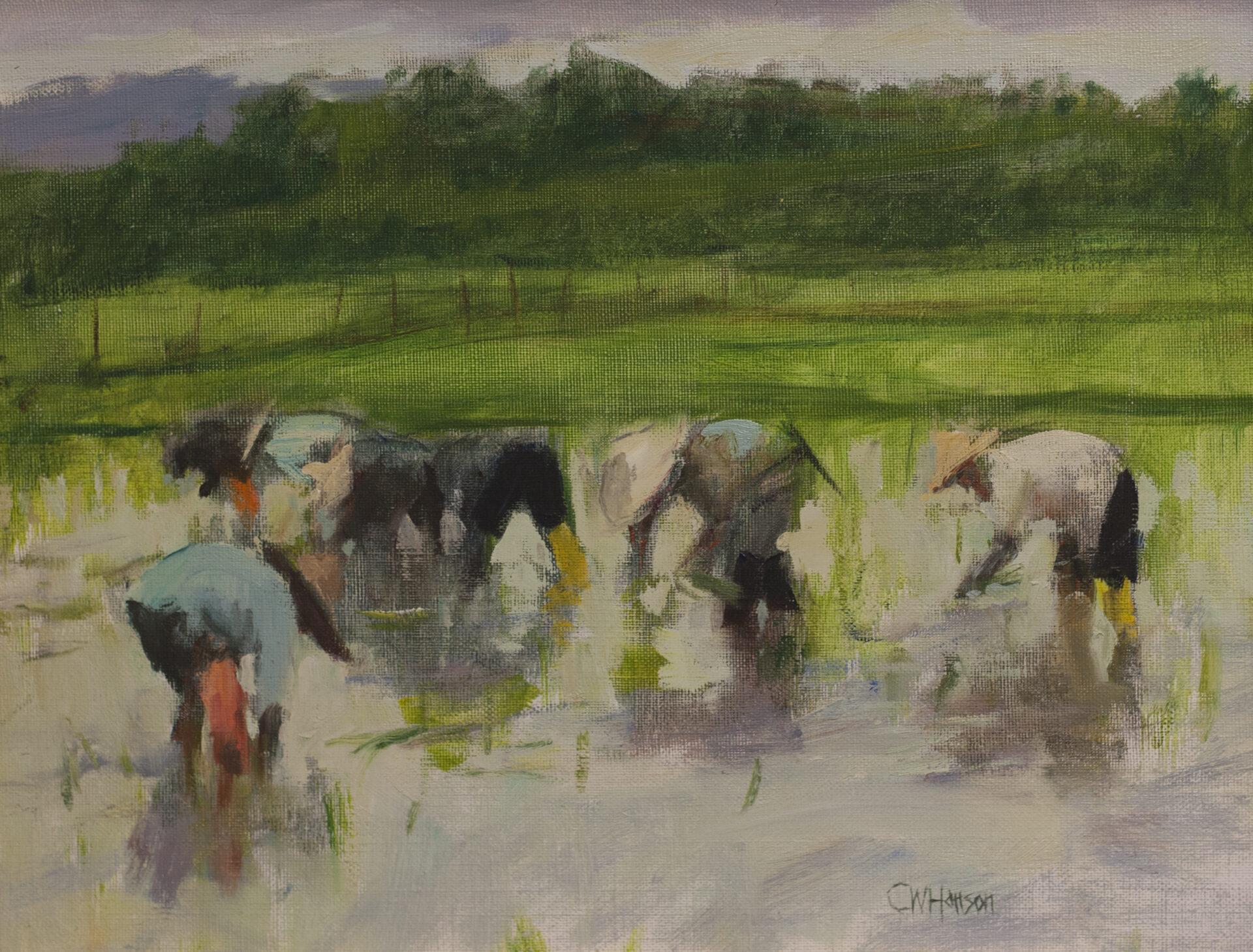 Curt Hanson - Rice Planting