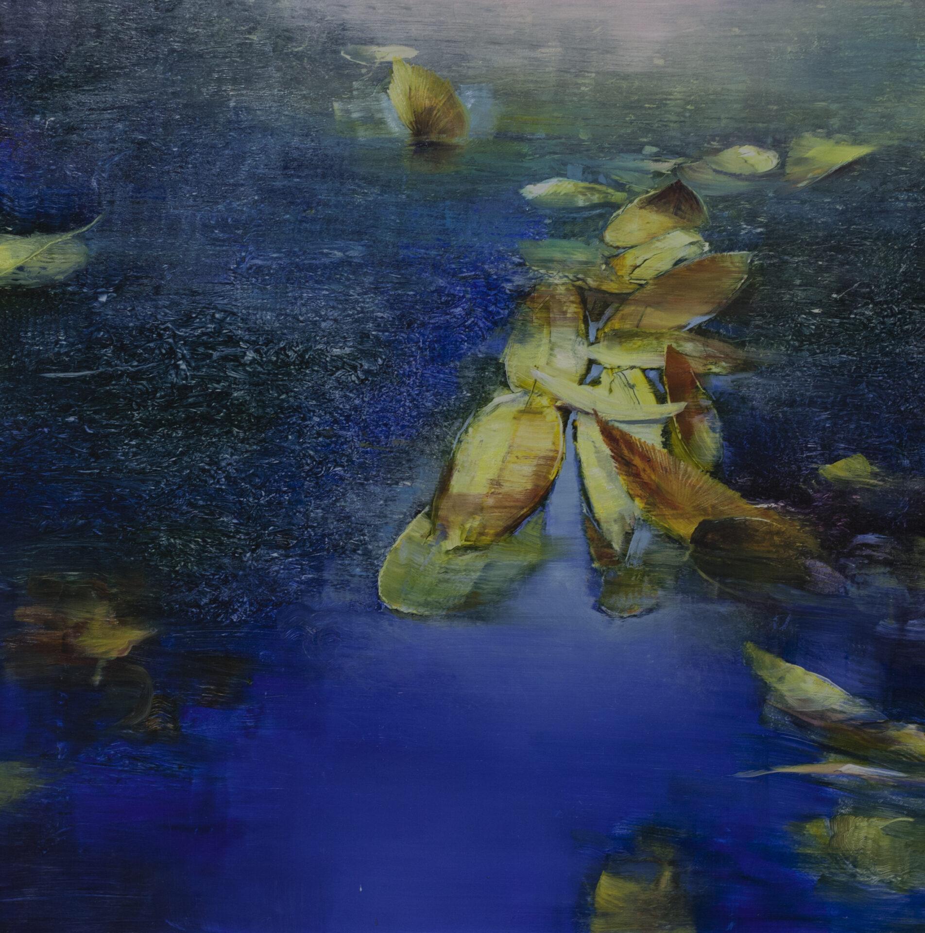 David Dunlop - Misty Waters