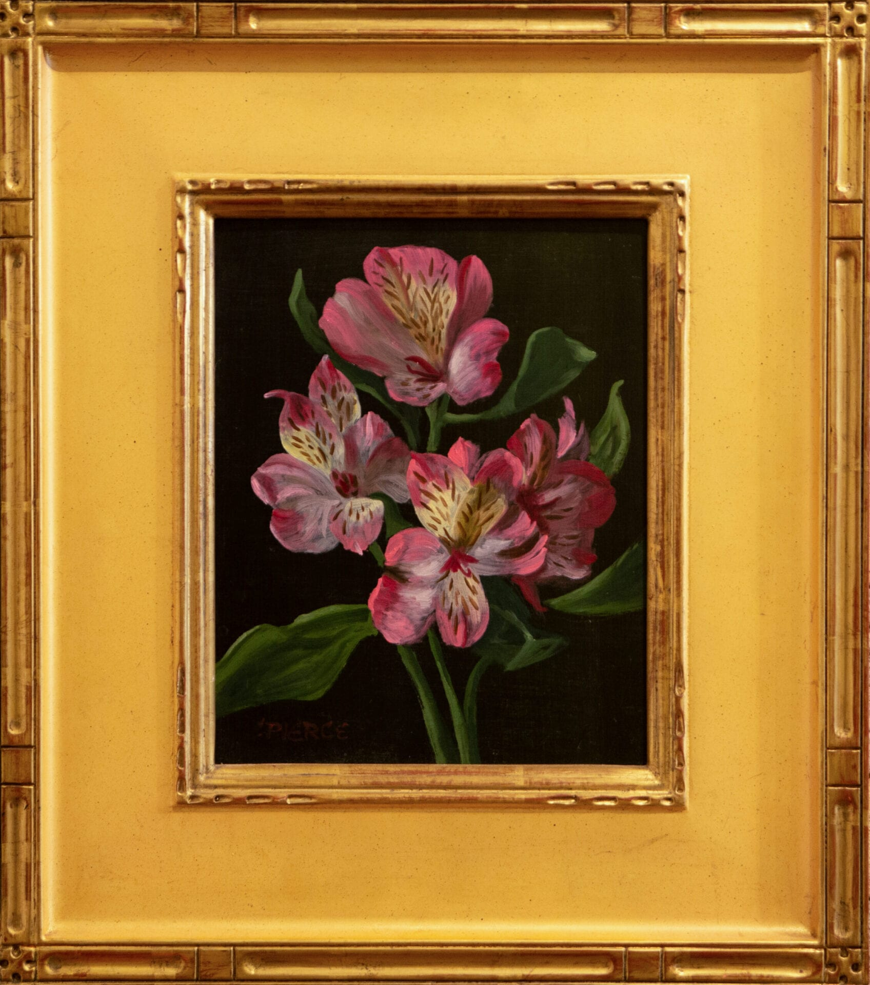Alstroemeria | Christopher Pierce | Oil | 10 x 8""