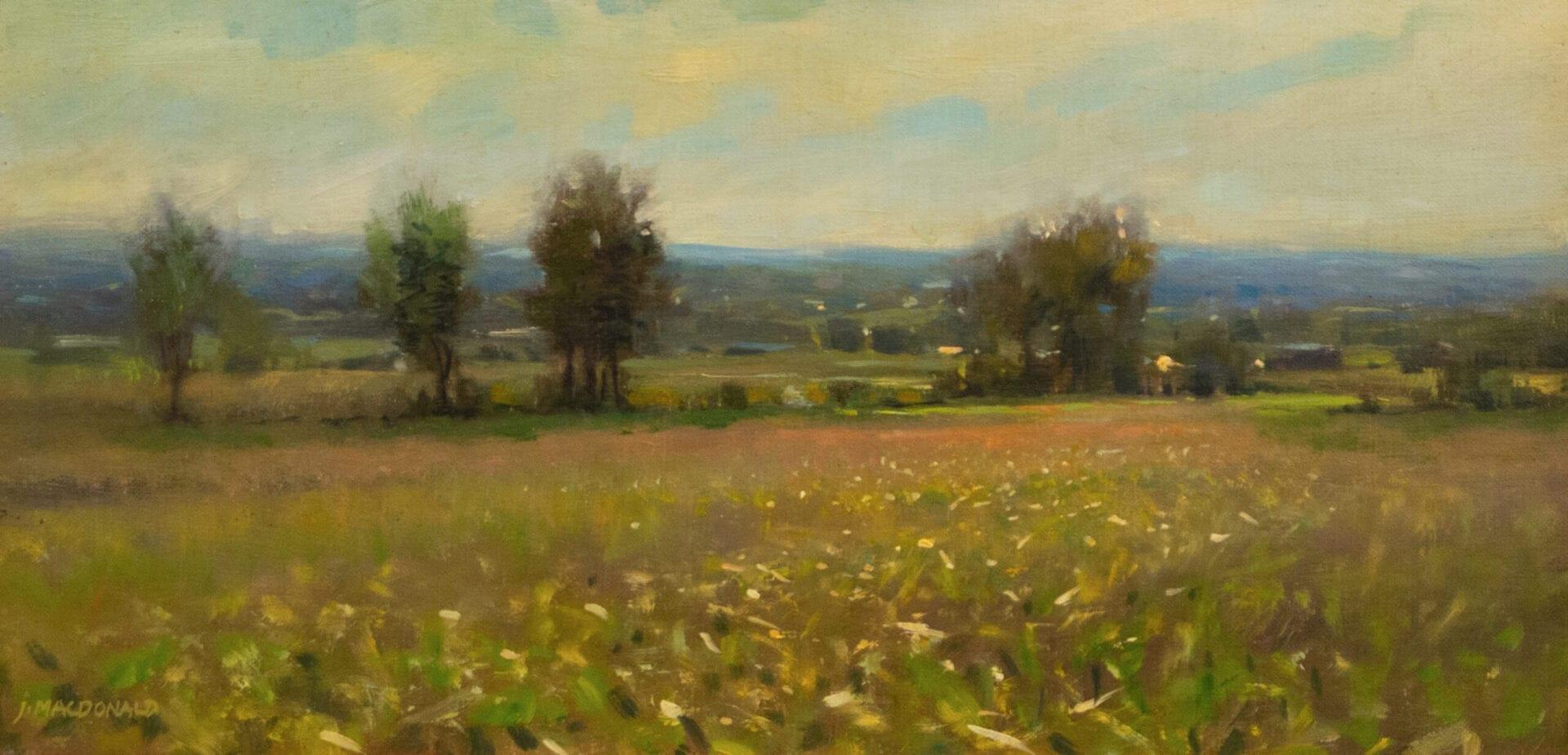 John MacDonald - Fields of July