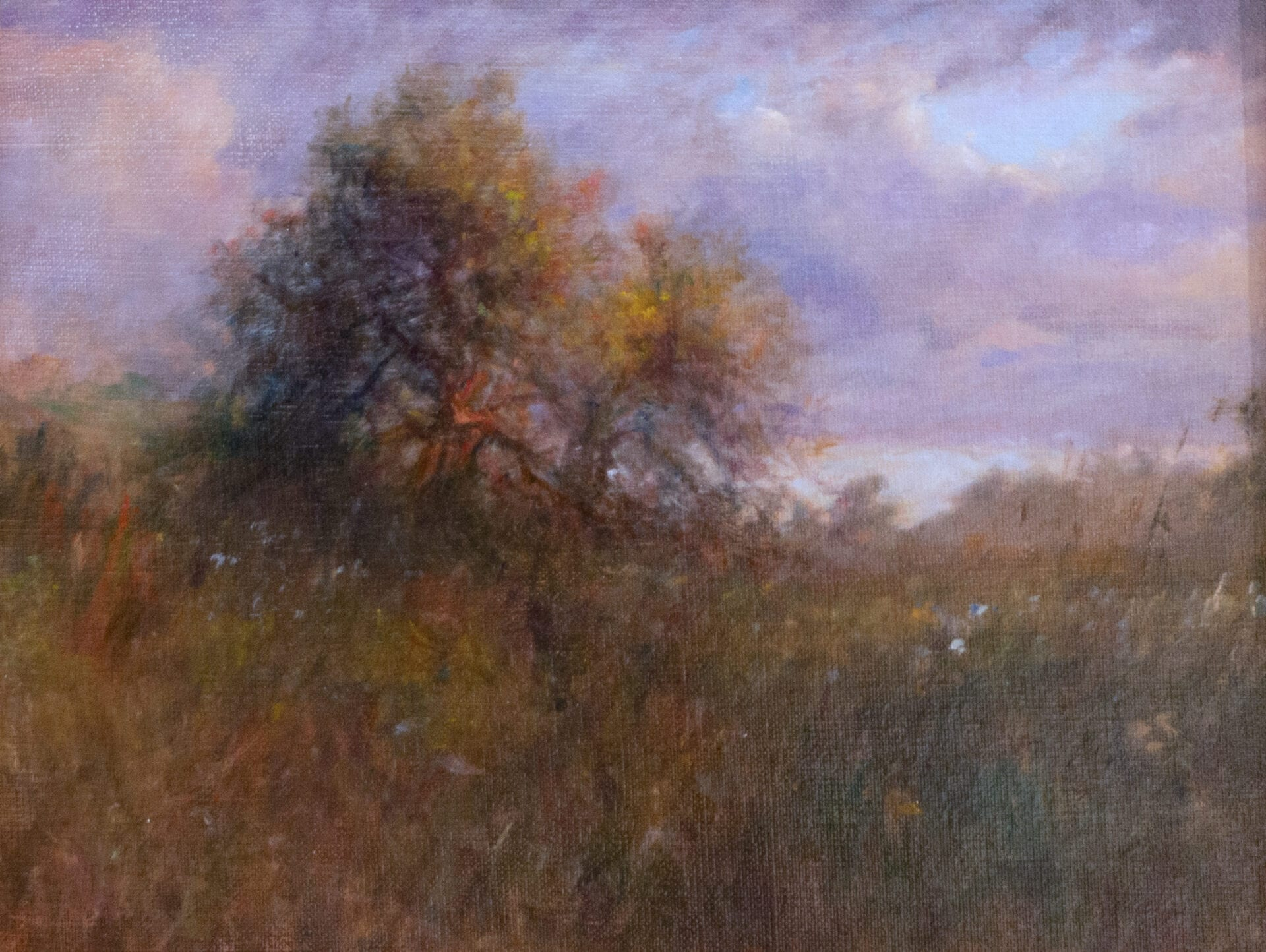 Trenton Youngs - This Old Apple Tree