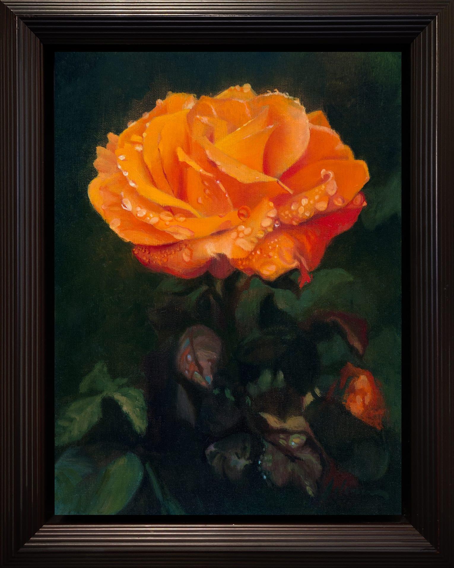 Adams_Orange_Rose_12x9_Frame