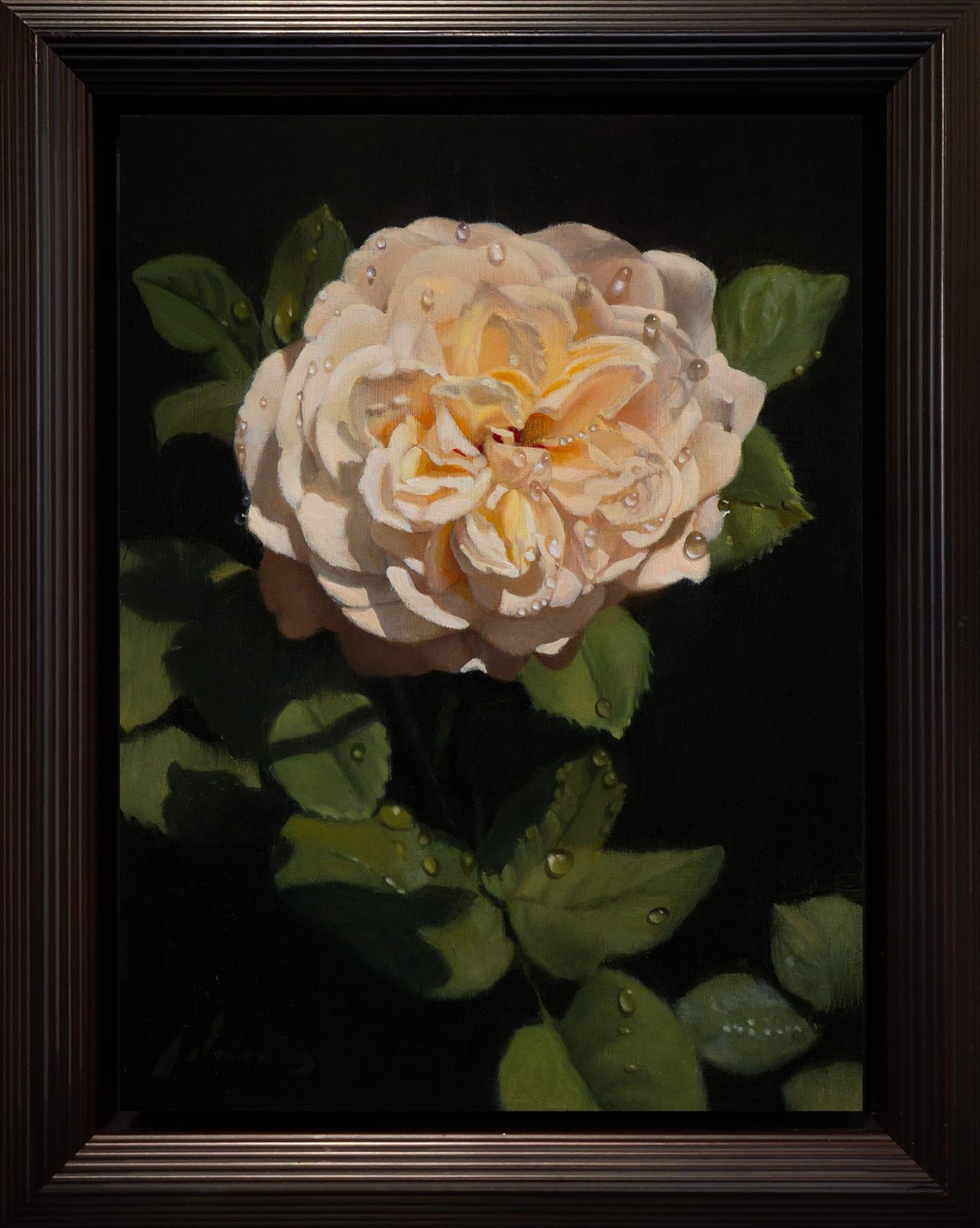 Adams_White_Rose_12x9_Frame